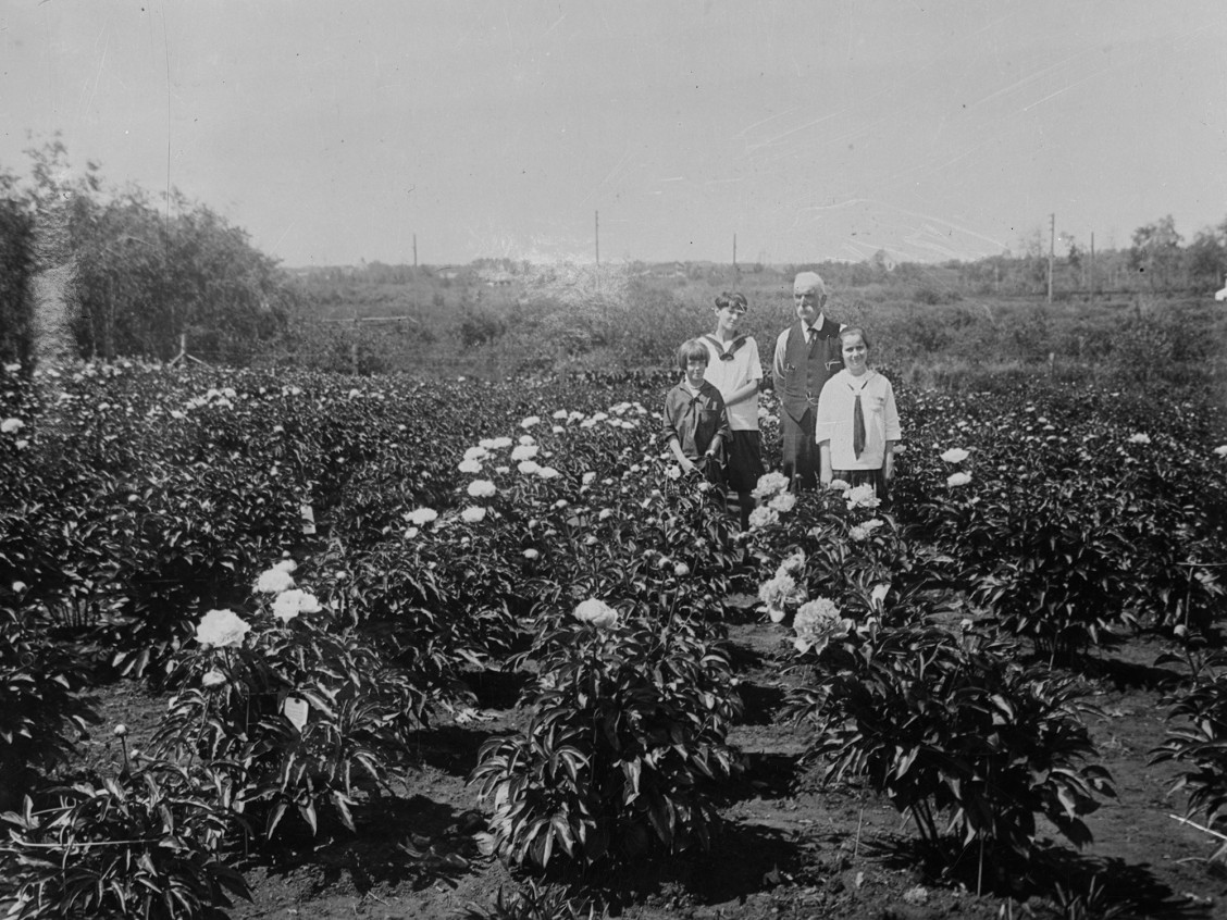 Silver Heights Peony Gardens, B6794, City of Edmonton Archives